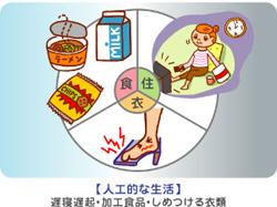 seikatsu-4.6.pdf